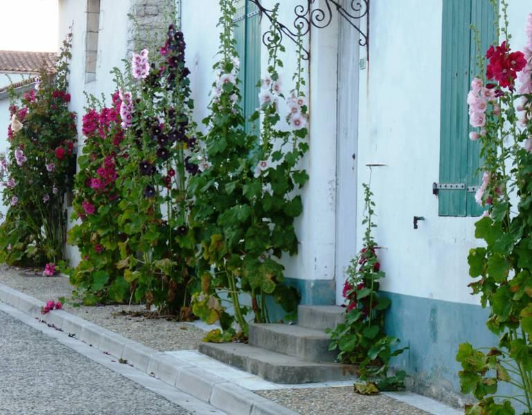 fleur-village